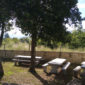 camping rio ulla 5